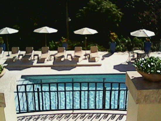 San Ignacio Resort Hotel : Beautiful view of pool area