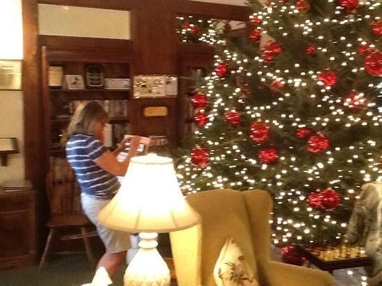 Harrington House Beachfront Bed & Breakfast: the christmas tree 2013