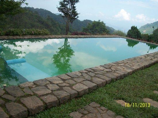 Wild Elephant Eco Friendly Resort : Magnificent pool