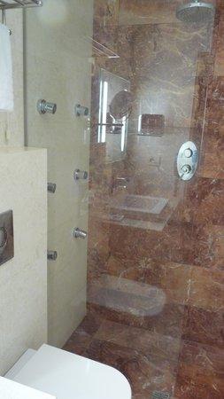 Palladion Hotel: badkamer met inloopdouche (jetstralen werkten helaas niet)