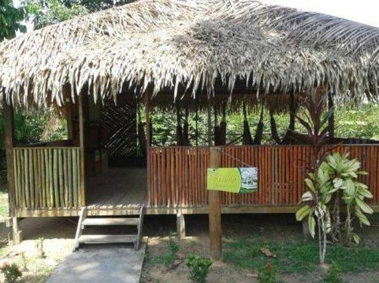 Amazon Turtle Lodge: Redário...local de deitar e relaxar