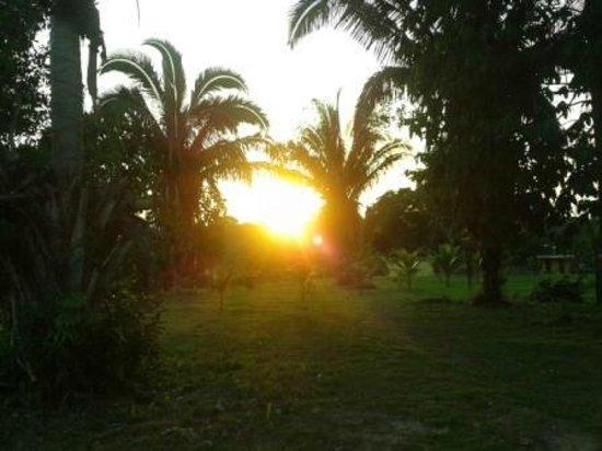 Amazon Turtle Lodge: Por do sol (vista de dentro do terreno do hotel)