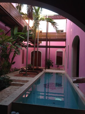 Rosas & Xocolate Boutique Hotel & Spa : pool