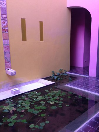 Rosas & Xocolate Boutique Hotel & Spa : patio fountain