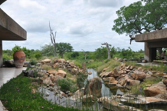 Sabi Sabi Earth Lodge: Earth Lodge