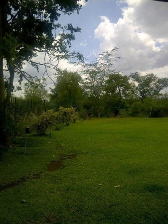 Ilala Lodge: Back Garden