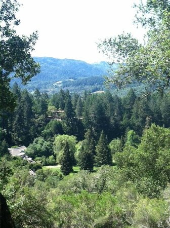 Meadowood Napa Valley: View from hike