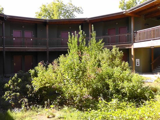 Gaia Hotel & Spa Redding, an Ascend Hotel Collection Member: Blick Innenhof