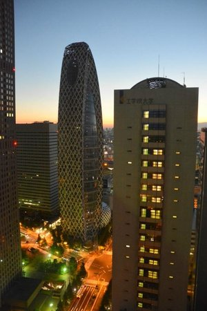 Keio Plaza Hotel Tokyo: morning view from 38th floor