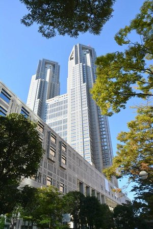 Keio Plaza Hotel Tokyo: take the tower to left for best views