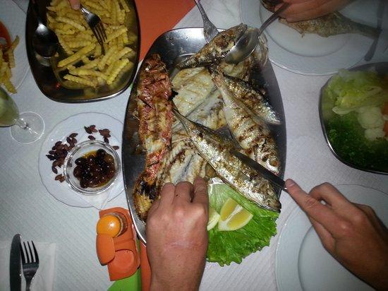 snackbar restaurant ALFERIA: recht uit de zee !