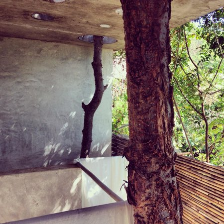 Casa Mermejita: Sanitarios casa circular