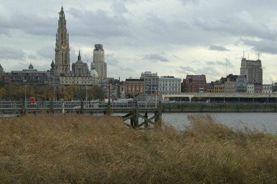 Cyclant: Skyline from the left bank
