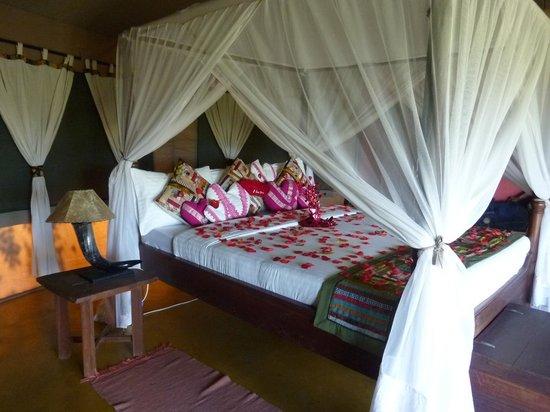 Serengeti Simba Lodge : lovely roses for our honeymoon