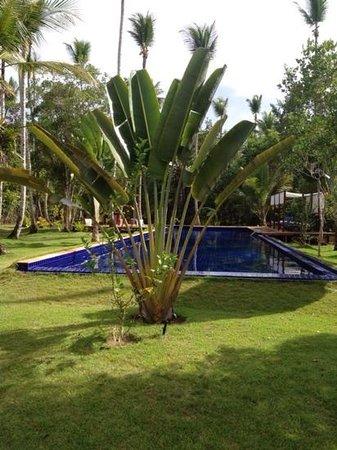 Hotel Vila dos Orixas : VUE DE NOTRE BUNGALOW