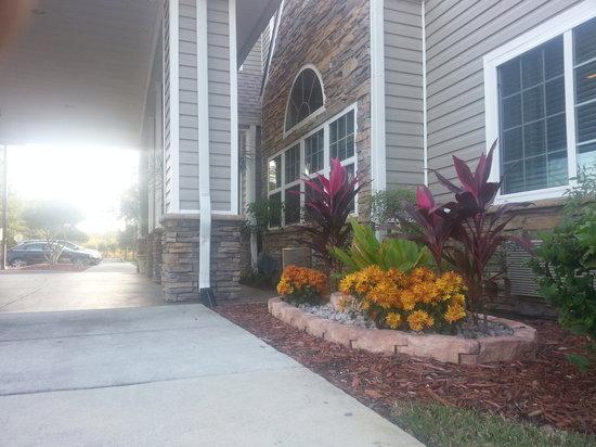 Microtel Inn & Suites by Wyndham Jacksonville Airport: Full Bloom