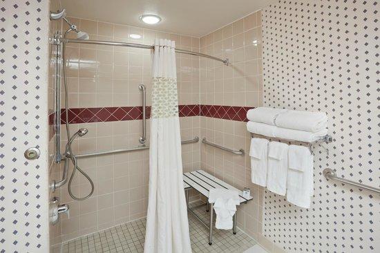 Hampton Inn Sioux Falls: Accessible Shower