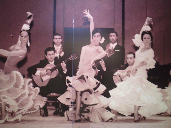 Hotel Derby Sevilla: Flamecnco