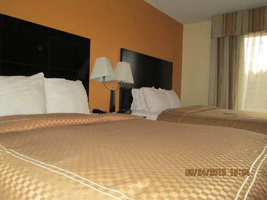 Comfort Suites Clinton: Looks and feels clean and comfortable.