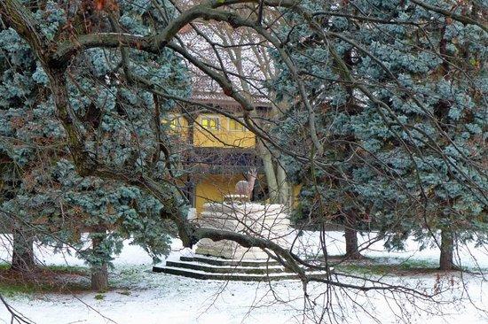 Parkhotel Schloss Meisdorf: Meisdorf - Schlosspark