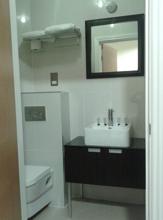 Cromwell International Hotel: bagno
