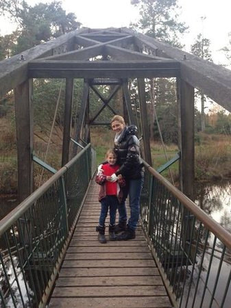 Bedgebury National Pinetum and Forest: Bridge over calm waters