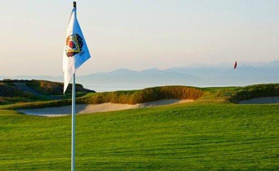 Victoria Golf Club : 8th Green
