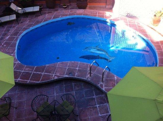 Hotel Quinta Rio Queretaro: La alberca