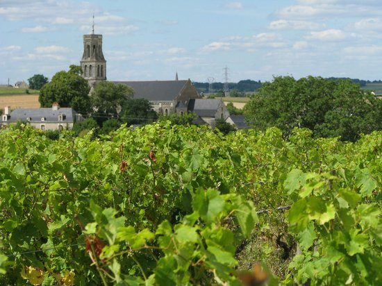 Le Tasting Room Wine - Day Tours: Loire Beauty