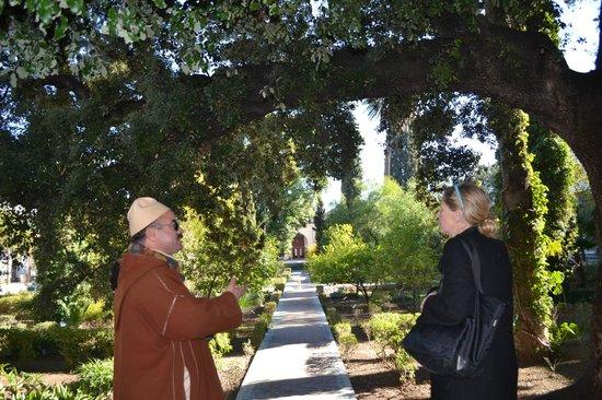 Dar Batha Museum : gardens of Museum Batha