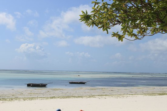 Neptune Pwani Beach Resort & Spa : plage