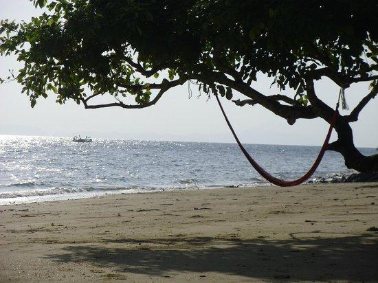 Phi Phi Relax Beach Resort: Hammock