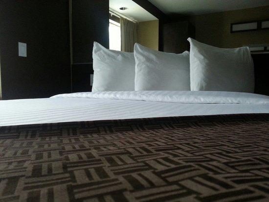 Microtel Inn & Suites by Wyndham Jacksonville Airport : Epic