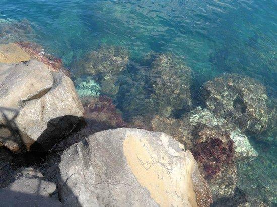 Bellevue Syrene: Water view