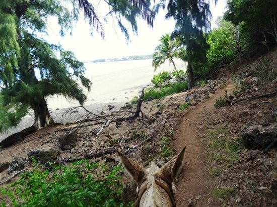 Molokai Mule Ride: Down at the beach at the peninsula