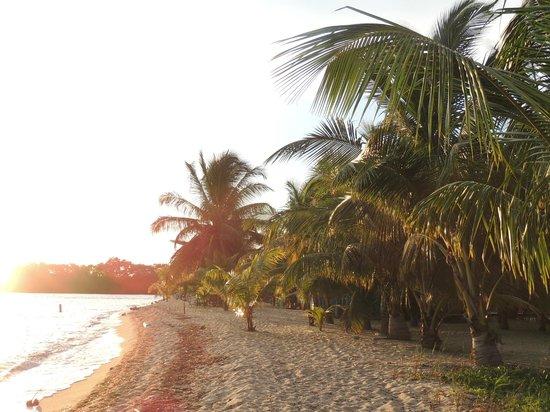 Seaspray Hotel: Playa hacia la derecha