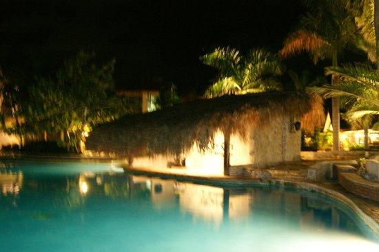 IFA Villas Bavaro Resort & Spa: bar a cocktail dans la piscine