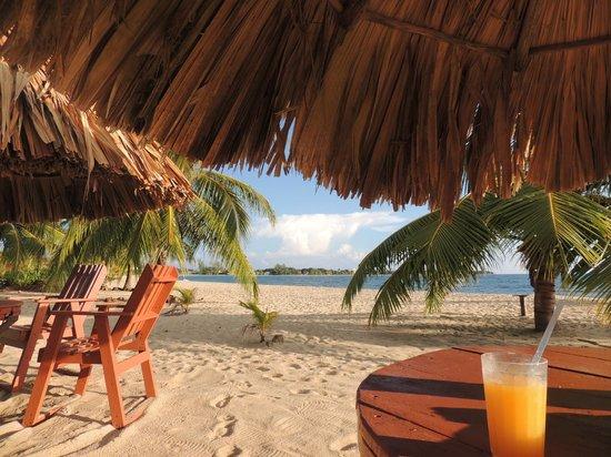 Seaspray Hotel: Vista desde las mesas del restaurant en el hotel