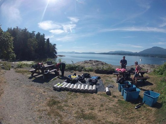 Nanaimo Dive Outfitters: A summer day of diving
