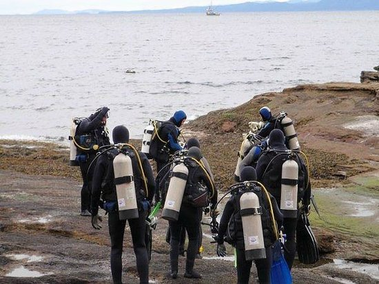 Nanaimo Dive Outfitters: A shore dive excursion