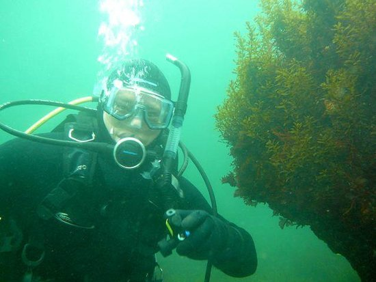 Nanaimo Dive Outfitters: Happy diver