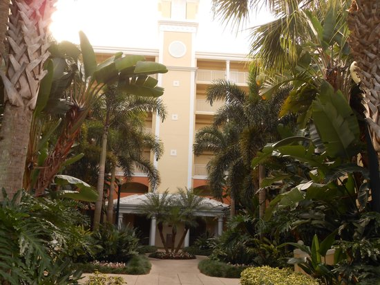 Hilton Grand Vacations at SeaWorld : Front of Our Building