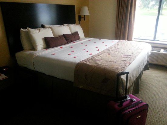 Ramada Wisconsin Dells: Giant clean bed!