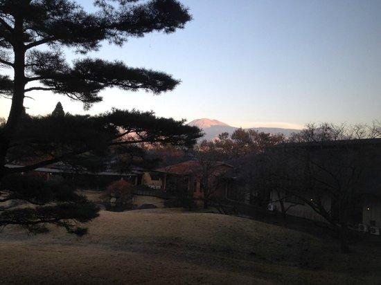Arden Hotel Aso: 庭園はちょっと季節外れ