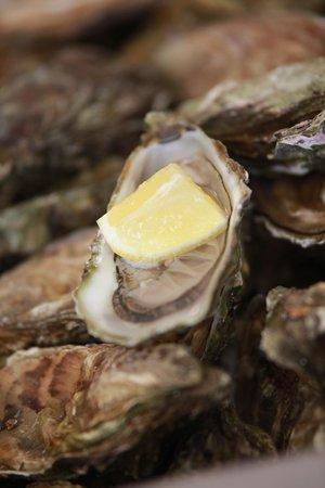 KOISHI fish & sushi restaurant: oyster every day