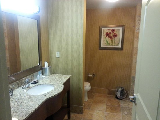 Hampton Inn Tomah: Bathroom, Room 207