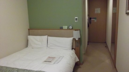 Hotel Sunroute Plaza Shinjuku: Economy double room (bed is smaller than a Queen's bed)