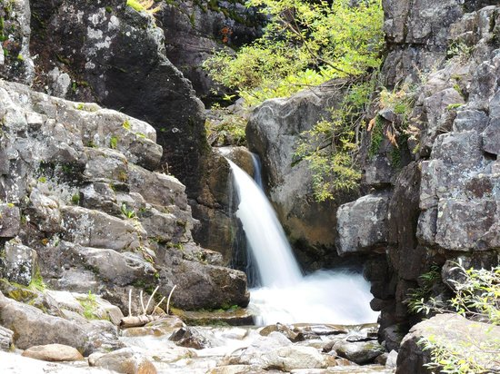 San Juan National Forest : Lime Creek waterfall