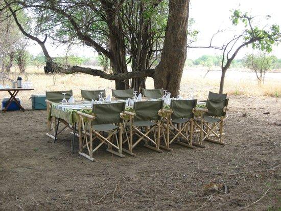 Mfuwe Lodge - The Bushcamp Company: Breakfast on safari