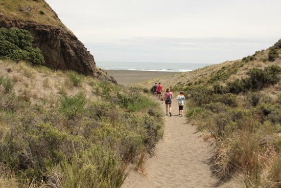 Bush and Beach: Walk to beach